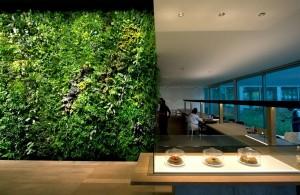 curso de jardim vertical; como montar um jardim vertical; como montar um telhado verde